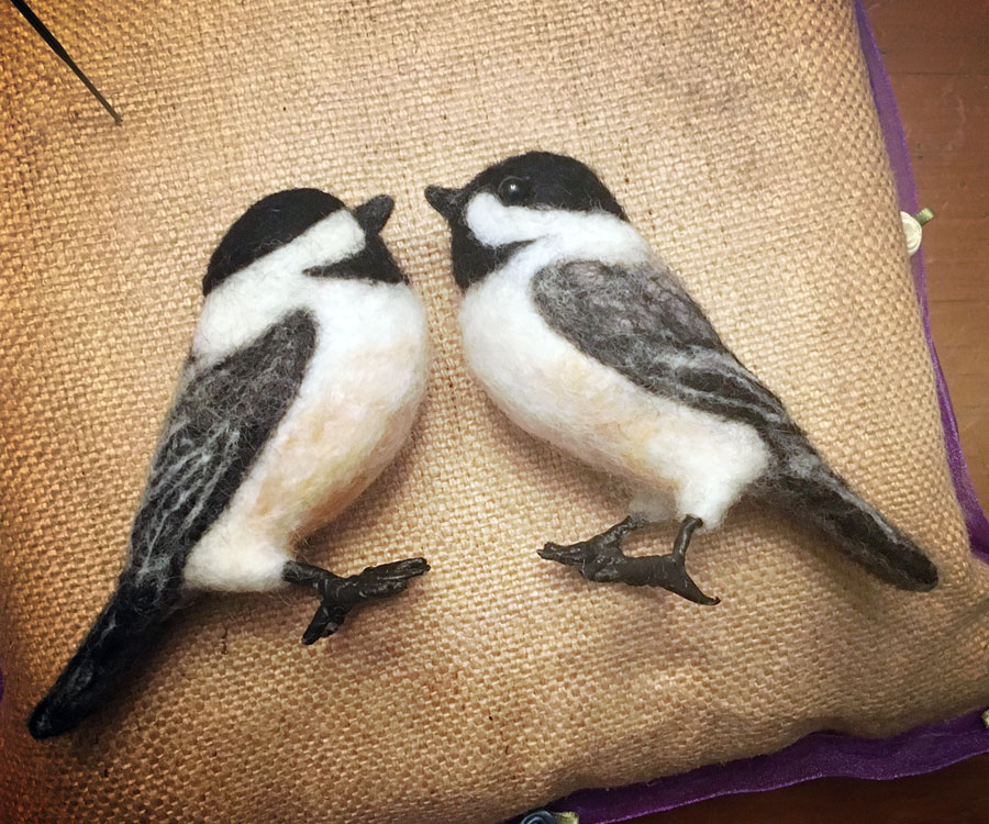 Chickadee Face 2 Face