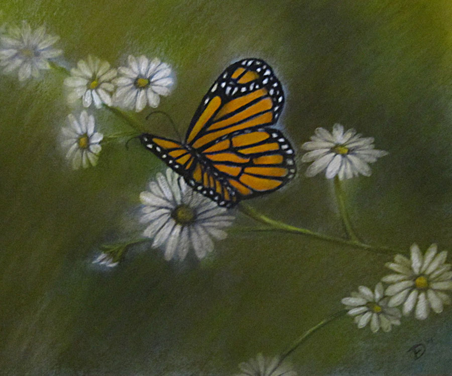 Monarch Dances with Daisies